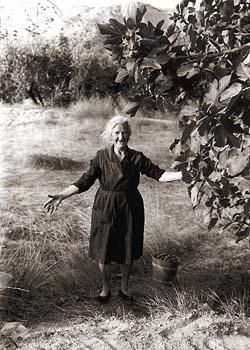 15 de octubre, Día de la Mujer Rural: dedicado a ellas
