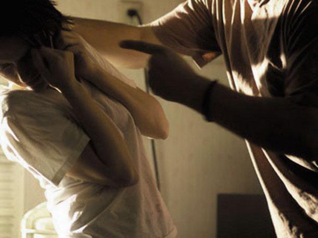 La Violencia de Género en 2014.