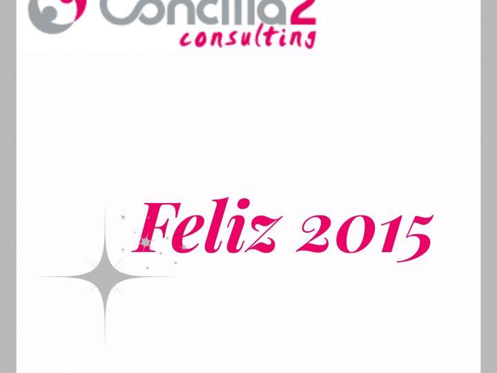 Repasando nuestro 2014 en Concilia2.