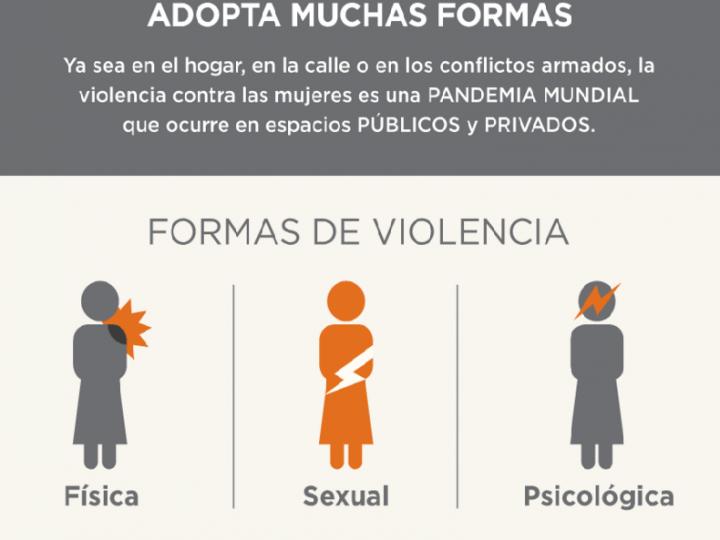 Agenda del 25N, Día Internacional contra la violencia de género