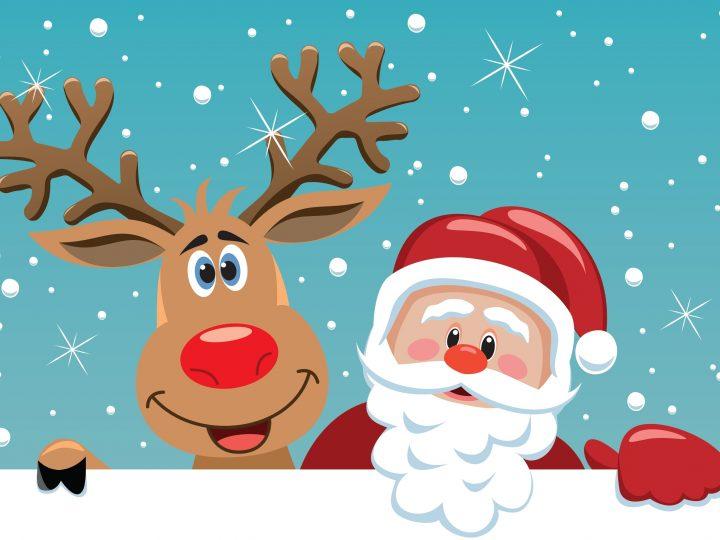 Ideas ecológicas para decorar el Árbol de Navidad
