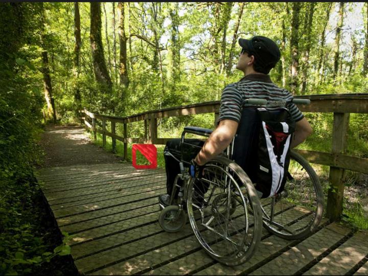 Turismo accesible. Sean cuáles sean tus capacidades ¡viaja!