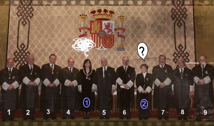 El Tribunal Constitucional ¿un espacio para mujeres?