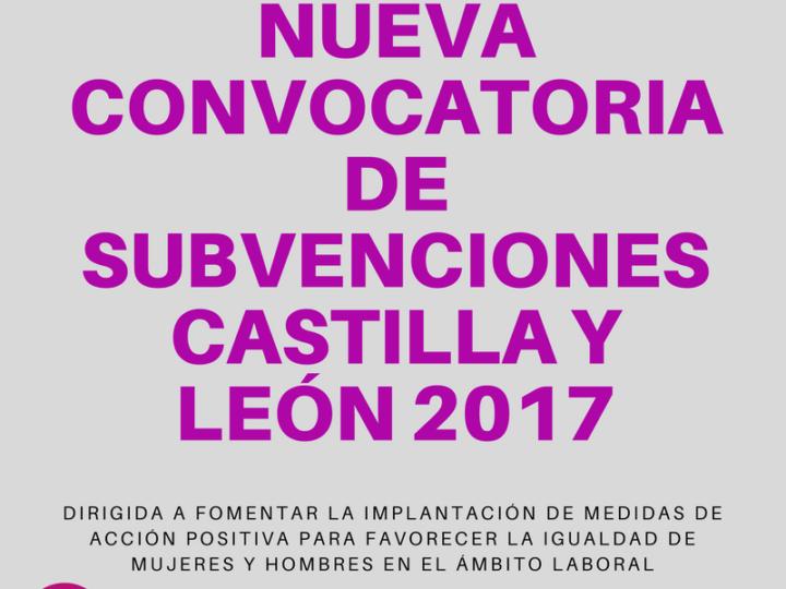 SUBVENCIÓN CASTILLA Y LEÓN 2017