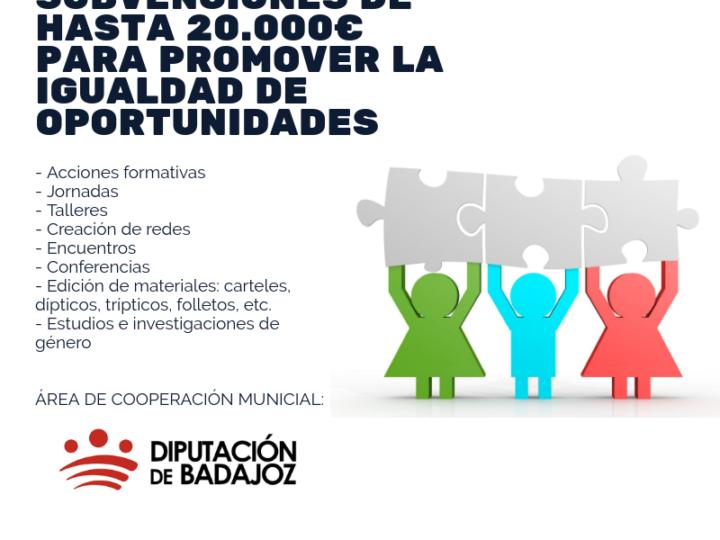 Subvenciones para proyectos dirigidos a promover la Igualdad en los municipios de la provincia de Badajoz
