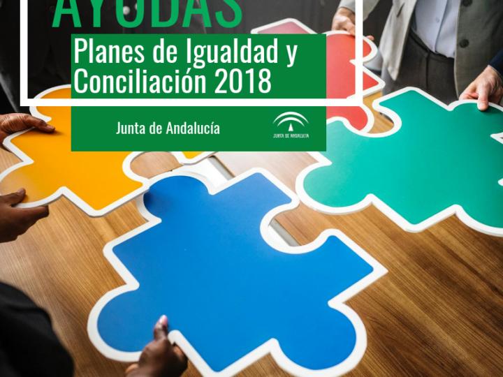 Convocatoria de subvenciones para planes de Igualdad: Andalucía