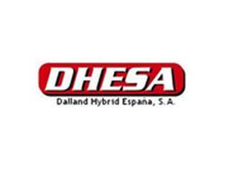 Dhesa