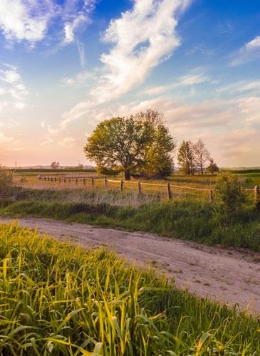 Las mujeres en el mundo rural, las grandes olvidadas