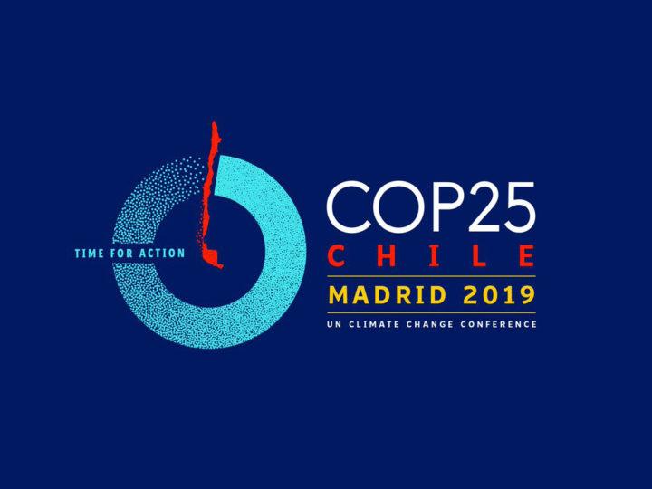 COP25 y la sostenibilidad de la vida desde la perspectiva de género