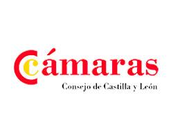 Cámaras. Consejo Castilla y León