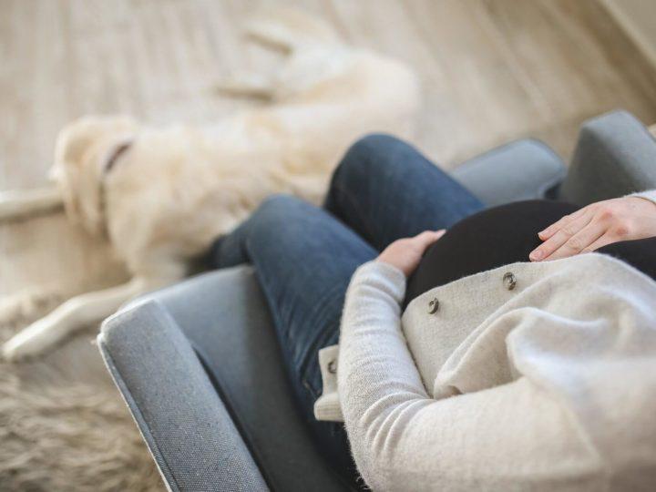 Nuevo complemento por maternidad en la jubilación